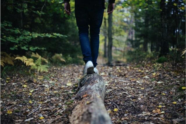 Abnehmen & inneres Gleichgewicht mit Cannabidiol