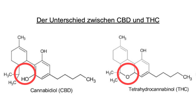 Cannabidiol (CBD) und Tetrahydrocannabinol (THC)
