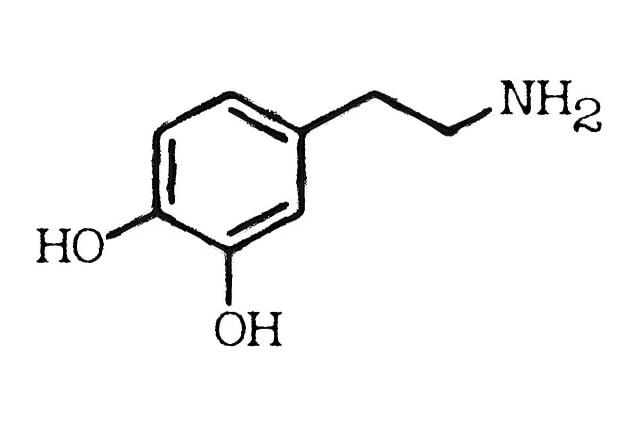 Dopaminausschüttung regulieren mit CBD