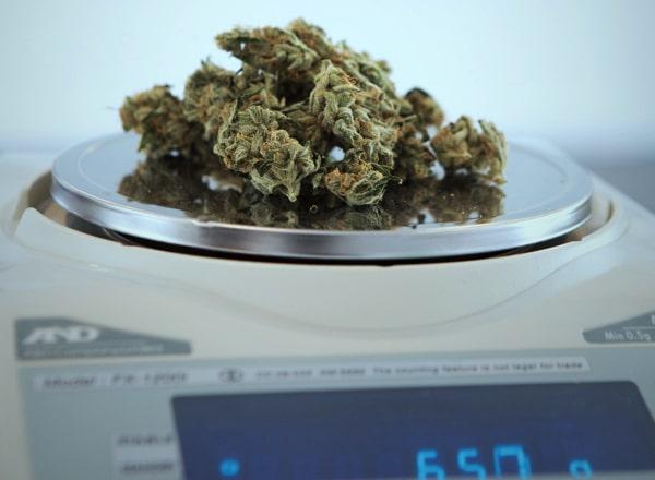 Legalisierung von Hanfprodukten