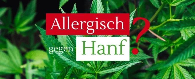 Allergie - kann man auf Hanf, Hanföl und CBD Öl allergisch sein