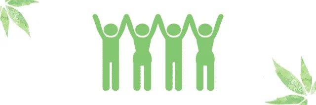 CBD Community Gruppe, Beratung, Erfahrungen