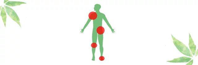 Entzündungen im Körper